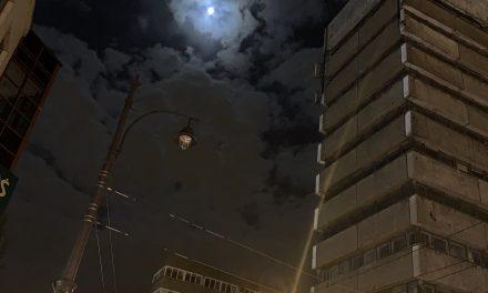 W świetle księżyca